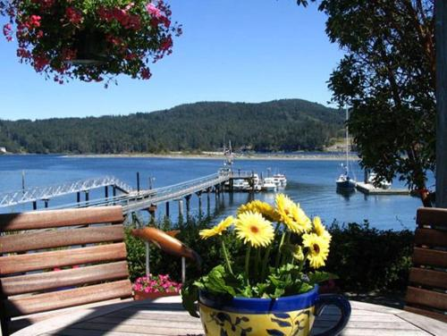 Cottages For Rent By Owner On Vancouver Island