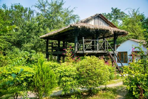 Island Jungle Resort, Chilha