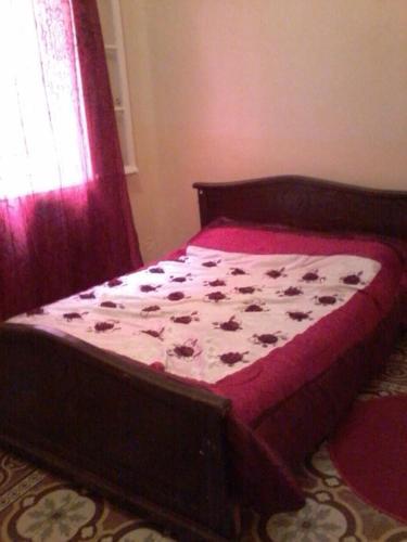 3 Appartements a louer pour les vacances, Mustaghanim