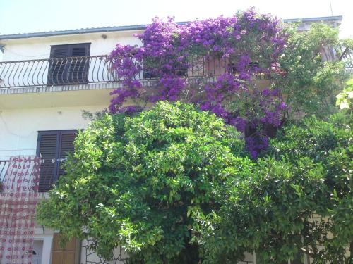 Apartments Raos Podgora