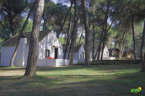 More about Camping Dehesa Nueva