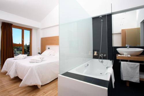 Double or Twin Room Tierra de Biescas 3