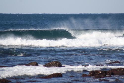 Blue Buddha Surf Hostel