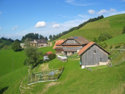 Отель Apartment Ober-Tiefenbühl 3 звезды Швейцария