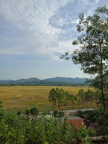 Thanh homstay, Phong Nha