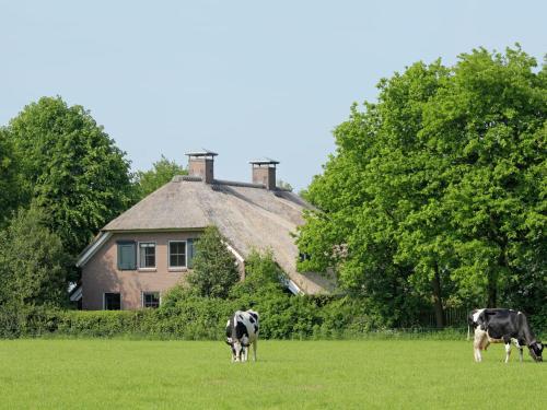 Luxe in Drenthe, Eesergroen