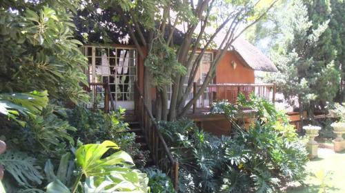 Picture of Treetops & Treats Guest House