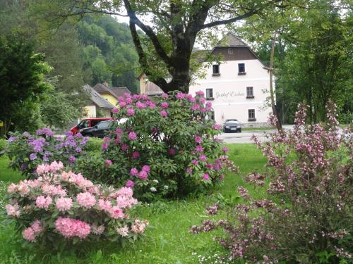 Gasthof Eschau - Familienzimmer