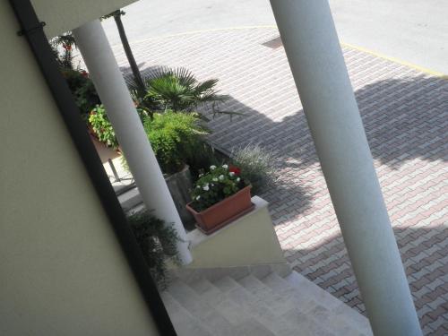 Motel Jankovic