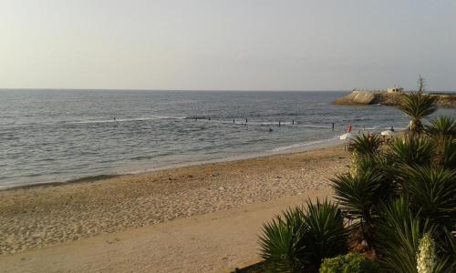 palm beach manssouria, Mohammedia
