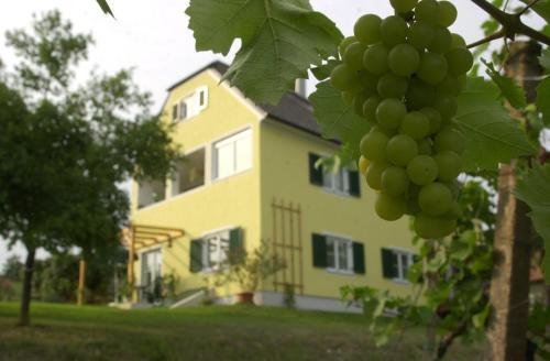 Landhaus Sammt - Apartment mit 1 Schlafzimmer und Terrasse