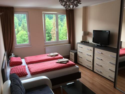 Holiday Apartment Spindleruv Mlyn
