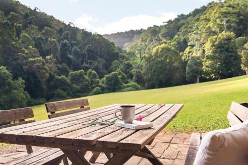 Mt Warning Forest Hideaway
