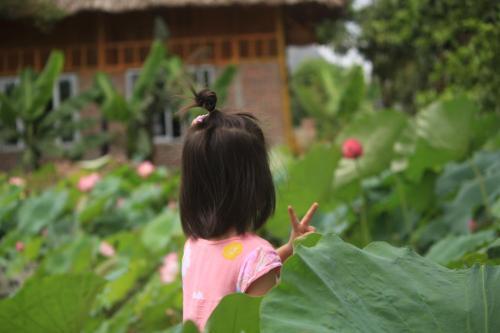 Maison de Ninh Binh, Ninh Binh