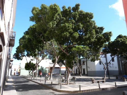 La Casa De Vegueta Hotel Review Gran Canaria Travel