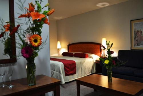 Hotel Mediterraneo Sa De Cv