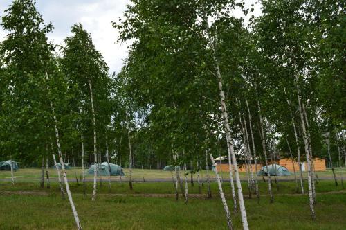 Camping in Nature Park Beremytske
