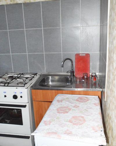 Apartment on Bokonbaev 2, 比什凯克