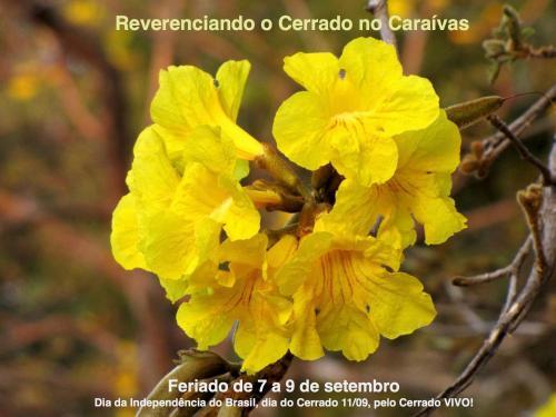 Reserva Ecológica Caraívas