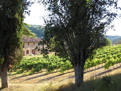Domaine de Saint Ferreol - Gîtes