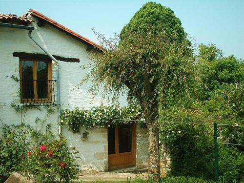 Rose Cottage in France