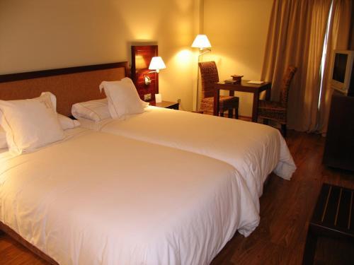 Habitación Doble Estándar con aparcamiento Hotel & Spa El Privilegio 3