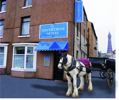 Silverdene Hotel, The,Blackpool