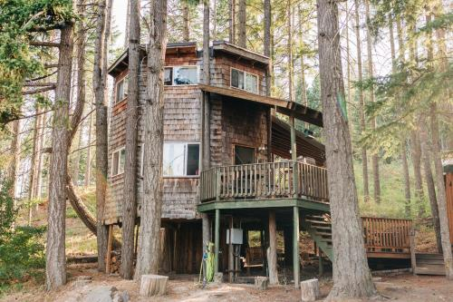 Tree House Tranquil-A-Tree