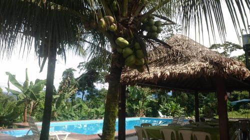 Hotel Puerto Selva