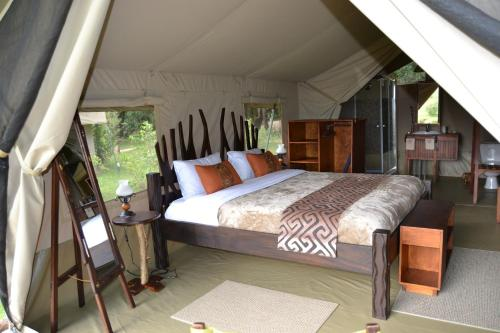 Superior Tent with Game Drives