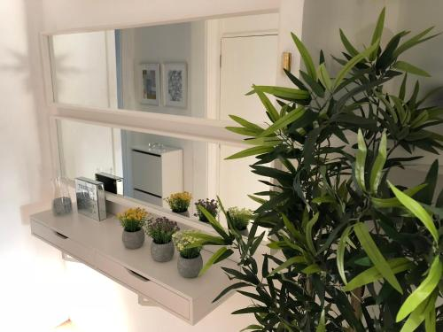 MODERN FLAT IN THE MAIN CENTRE • Sé de Braga •