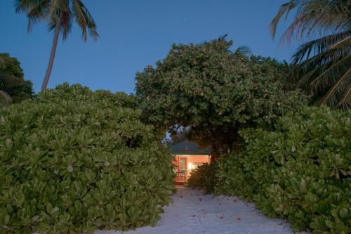 Canareef Resort Maldives Meedhoo Maldives