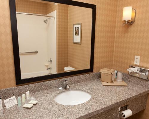 Comfort Suites Pecos