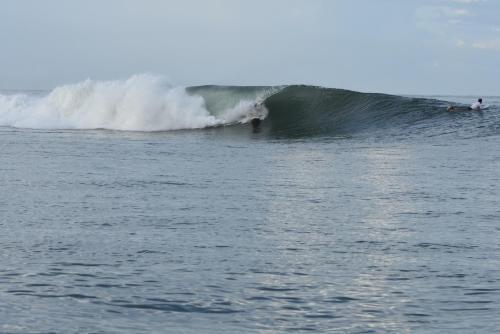 Vivir Surf and Fish, Miramar