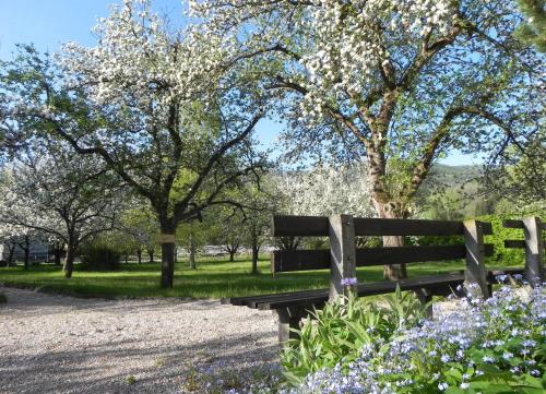 Gasthof Grüner Baum