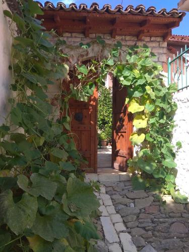 Guesthouse Hlias Gloria, Berat