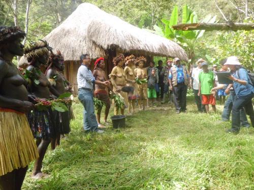EightPlusOne Wamena