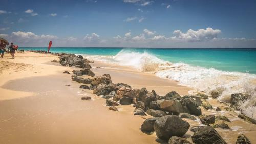 Only 350 yards from Eagle beach, Palm Beach
