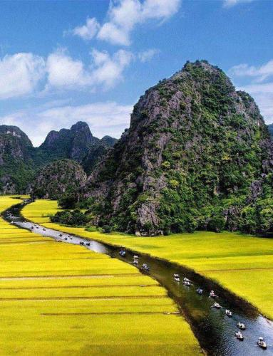Wild Flower Homestay, Ninh Binh