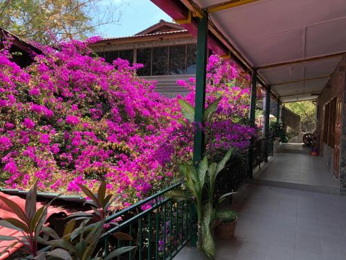 Hotel California Dili, Dili