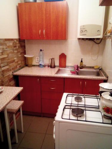 2 bedroom apartment on Ploshcha Rynok