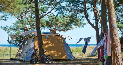 Dueodde Strand Camping