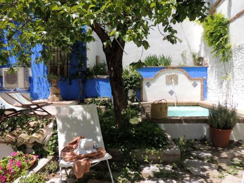Calle Cobertizo Sta. Inés, 18010 Granada, Spain.