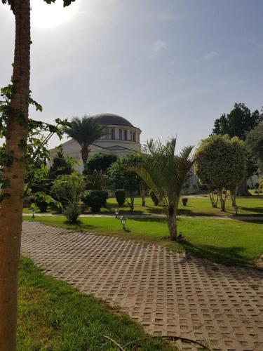 Holy Tree hostel, Jericho