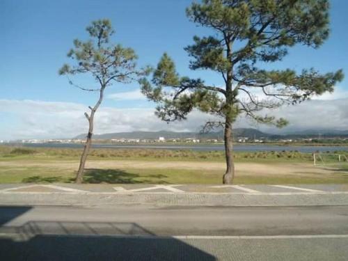 CasaMag River View