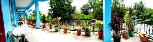 The Guest Lodge Palau, Koror