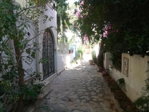 S+2 calme et lumineux avec jardin, Hammamet