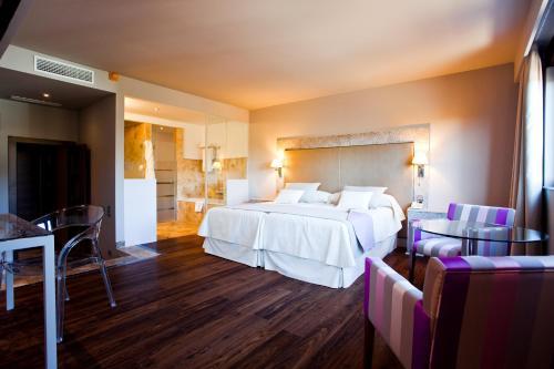 Triple Room Hotel & Winery Señorío de Nevada 2
