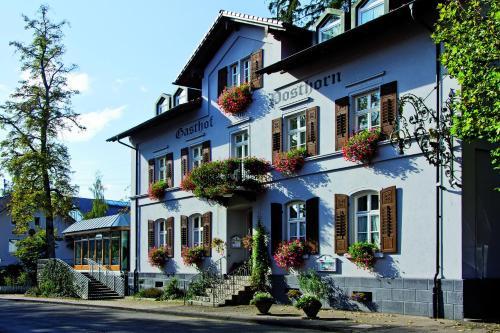 Отель Posthorn 0 звёзд Германия