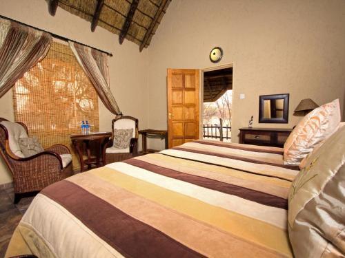 Grassland Bushman Lodge, Ghanzi